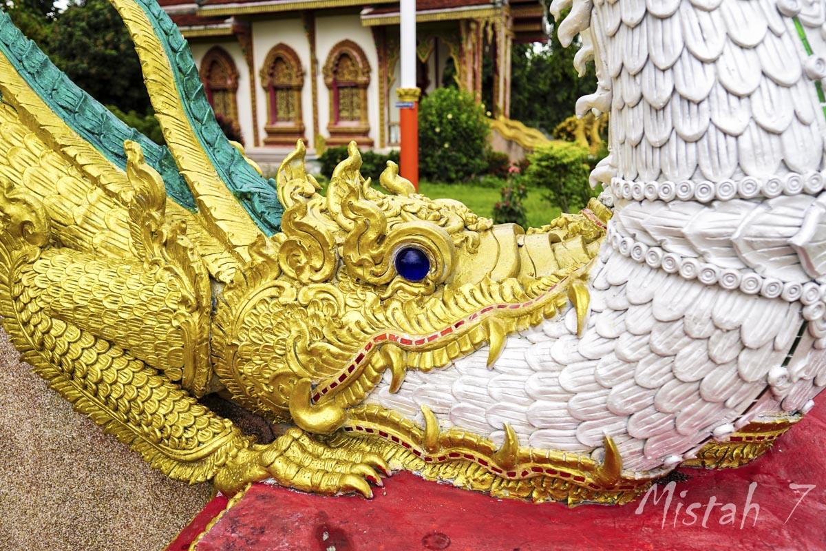 WatDongPaMiang-6.JPG