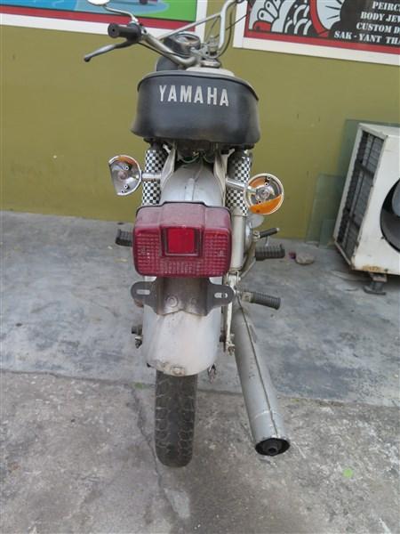 Yam 2.jpg