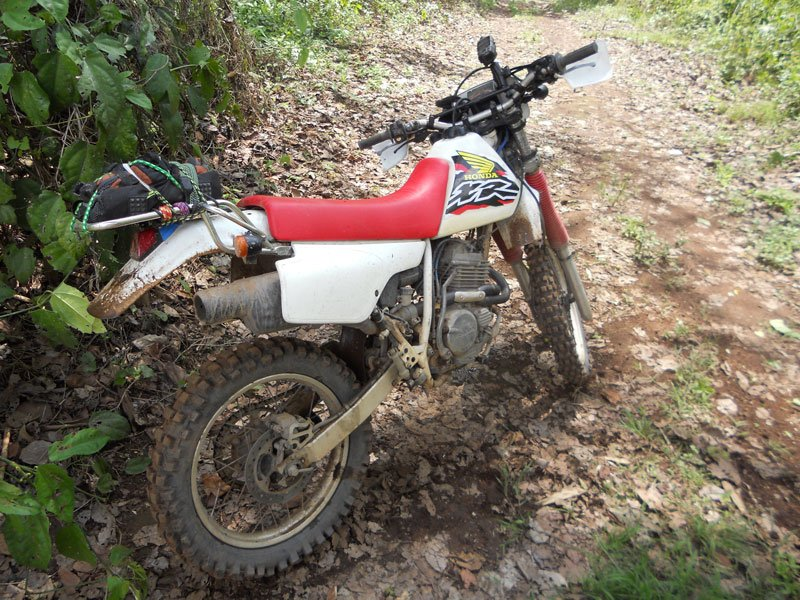 What do you ride? | Ride Asia Motorcycle Forums